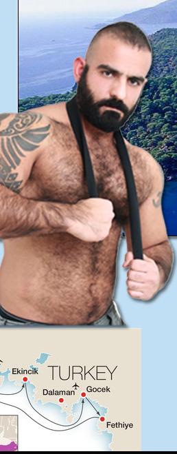Gay bears montreal