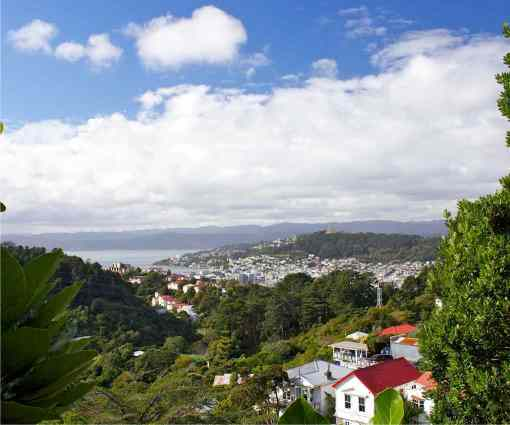 Wellington, the capital