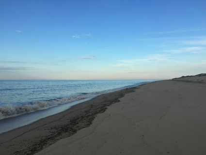 Enjoy a Provincetown Dune Tour – The LGBTQ Travel Expert ...